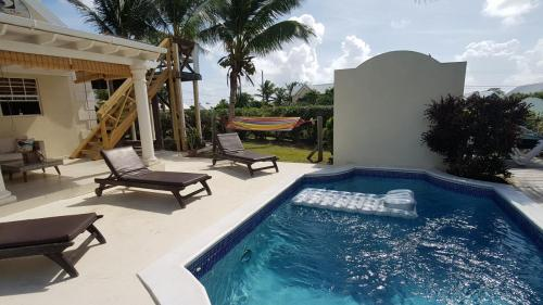 Pool, terrace and hammock area